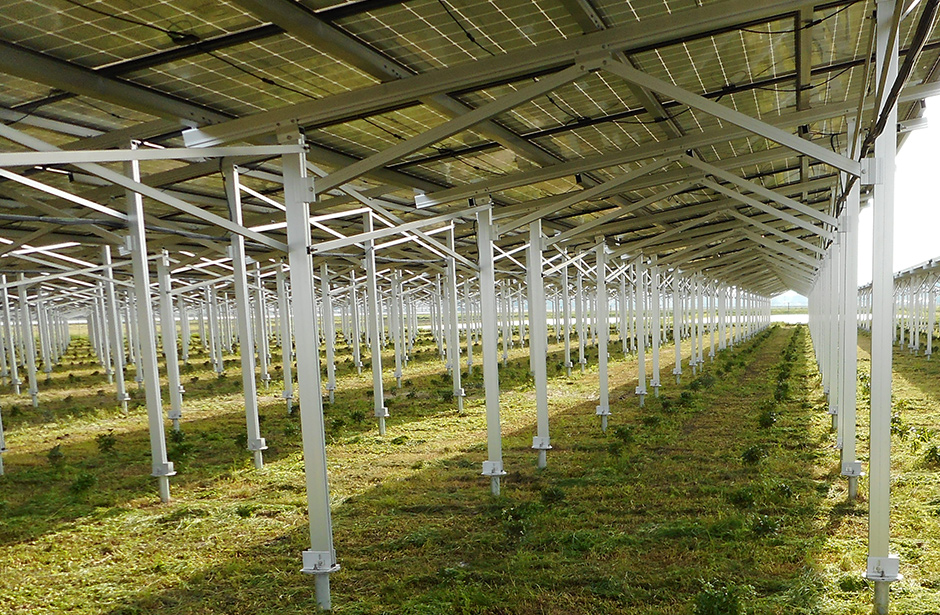 This is a system to share sunlight between crop fields and solar panels